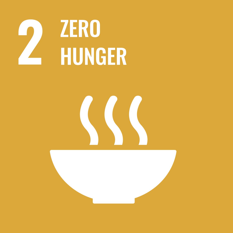 UN Goals